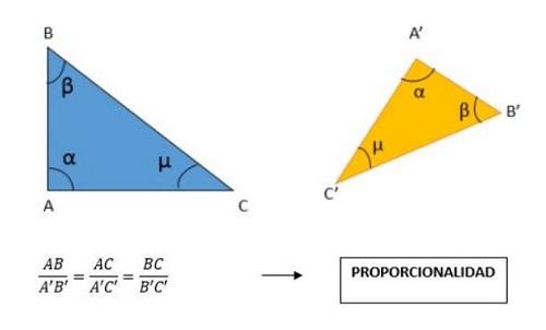 Teorema Tales spiegato per voi capire · Teorema matematico